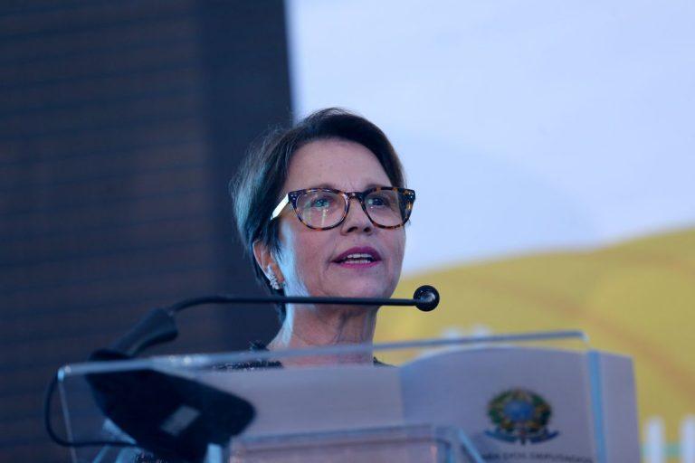 Sindilat pede ao futuro governo equidade na competitividade com o Mercosul